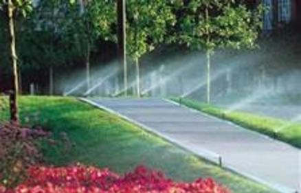 Abundant Water Sprinkler